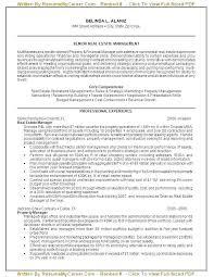 Help Writing Professional Resume Professional It Resume Professional Amazing Certified Professional Resume Writers