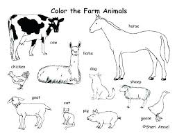 The Cattle Coloring Pages For Kids Or Free Printable Coloring