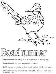 Small Picture Roadrunner coloring page