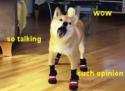 doge shibe gif. Interesting Shibe There Really Is No Limit To Doge Inside Doge Shibe Gif P