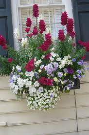 Flower Window Box Designs Summer Window Box Ideas Window Box Flowers Window Box
