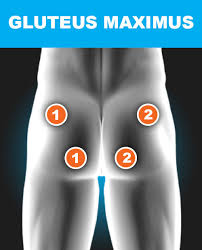 Tens And Ems Device Placement Charts Electrode Placement Chart Tens Ems For Pain Relief
