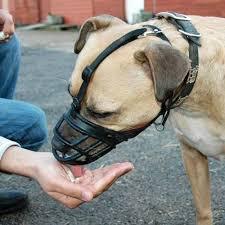 Baskerville Muzzle Size Chart Baskerville Dog Muzzle Ultra