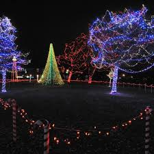 Rotary Lights Near Me 18th Annual Rotary Lights Begins In Riverside Park Local