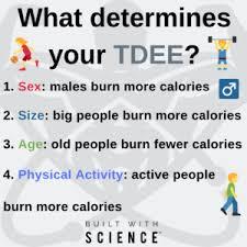 Tdee 101 How Many Calories Should I Eat Tdee Calculator