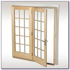Hinged Patio Doors With Screens Pilotprojectorg