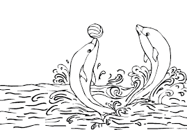 Small Picture Printable dolphin coloring page Coloringpagebookcom
