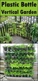 Build a vertical garden from recycled soda bottles