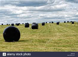 Black Silage Bags In A Field Near Stonehenge Stock Photo 110380346