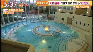 豊島園 庭 の 湯