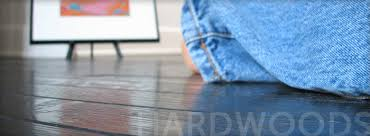 cleaning services carpets absolute carpet cleaning cleaning services hardwoods absolute carpet cleaning
