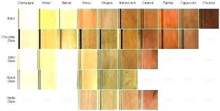 Maple Stain Colors Color Babyhazel Top