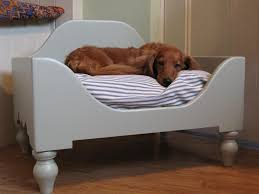 Beautiful Dog Bed For Your Cute Dog: Lovely Interior With Elevated Dog Bed  In White