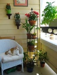 Small Picture Gardening Tricks for Smaller Spaces Apartment balconies