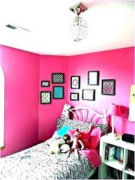 Image Sample Examples Amtektekfor Zebra Bedroom Ideas Room Decor Pink Criacuervosinfo