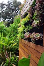 Small Picture 196 best Vertical Gardens images on Pinterest Vertical gardens
