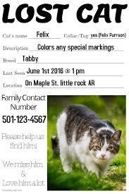 Lost Pet Flyer Maker 100 best Lost Pet and Pet Adoption Flyers images on Pinterest Lost 32