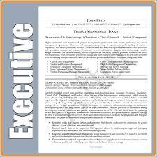 Executive Resume Writing Service Beauteous San Antonio Resume Writing Services Igniteresumes