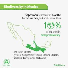 bio diversity essay importance of biodiversity essay order essay  biodiversity of teeb the mexican population directly or indirectly depends on nature through agriculture fisheries and