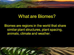 What Are Biomes What Are Biomes Biomes Are Regions In The World That Share