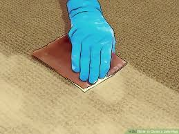 image titled clean a jute rug step 8