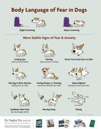 Dog Body Language Chart Pdf Dog Body Language Chart