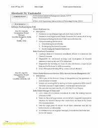 How To Build A Great Resume Extraordinary 60 Luxury How To Build A Good Resume Badsneakernet