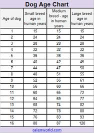 Age Conversion Chart Dog Age Calendar Dog Age Chart Dog Age Converter