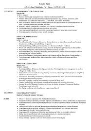 Director Consulting Resume Samples | Velvet Jobs