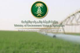 وزارة البيئة والمياه والزراعة تغرم 83 مخالفاً لـ«حفر الآبار» 1,23 مليون  ريال – صحيفة فيفاء