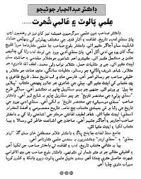 essay on in sindhi language