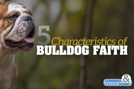 5 Characteristics Of Bulldog Faith Kenneth Copeland Ministries Blog