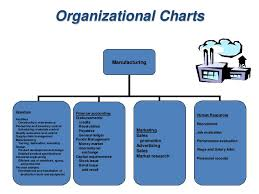 Typical Organizational Chart For Operations Management Mba Ii Pmom_unit 1 1 Introduction To Production Operation