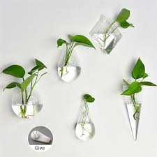 5 no plant or other decorative objects included in this item