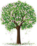 Image result for spring tree image