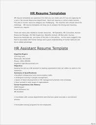 Resume How Write Resume Summary Inspirational Executive New Best
