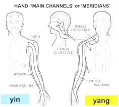 Triple Heater Meridian Chart Acupuncture Main Channels Or Meridians Visible Surfaces
