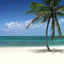 Beach Picture Beach Beach Images Pictures Wallpapers On Wallpapers And