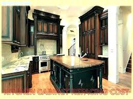 cost to replace kitchen cabinet doors change decorating replacing singapore cabinet installation cost refacing