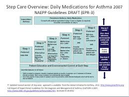 How You Can Live Better With Asthma Asthma Cure Asthma
