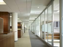 office natural light. impressive natural light office environment refreshes the space with no f
