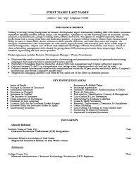 Insurance Broker Resume