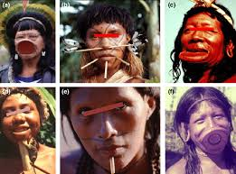 lip plate of chief raoni