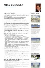 Sample Real Estate Agent Resume Commercial Real Estate Resume