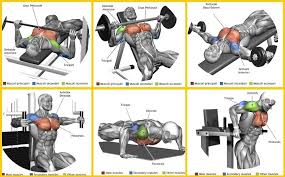 6 Best Chest Exercises Gym Workout Chart Gym Work Out Chest