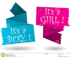 Boy Or Girl Baby Announcement Origami Banner Boy Girl Announcement Stock Illustration
