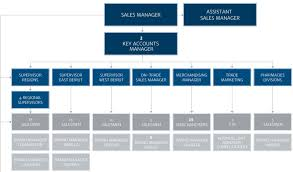 Marketing Department Organizational Chart Organizational Structure G Vincenti Sons S A L