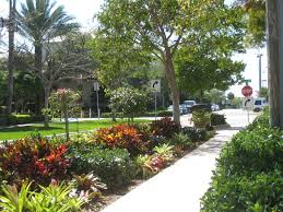 Small Picture 62 best Florida landscaping images on Pinterest Landscaping