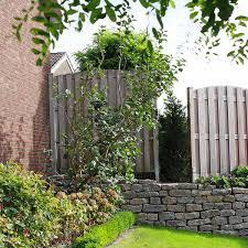 Vorgartengestaltung Im Raum M Nster Hamm Tripp Galabau Garten Strauch Baumpflege Sichtschutz