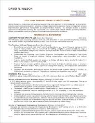 Human Resource Resume Objective Best of Examples Of Human Resources Resumes Human Resources Resume Objective